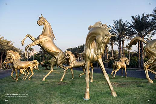 Fotodoc Dubai-3